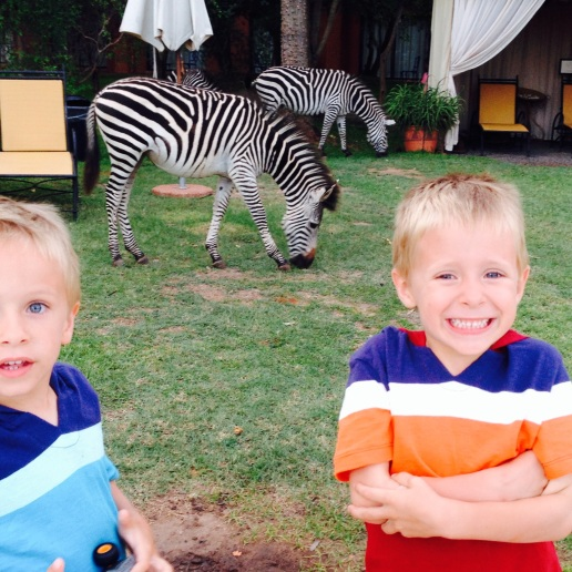 Hanging out with zebras in Livingstone